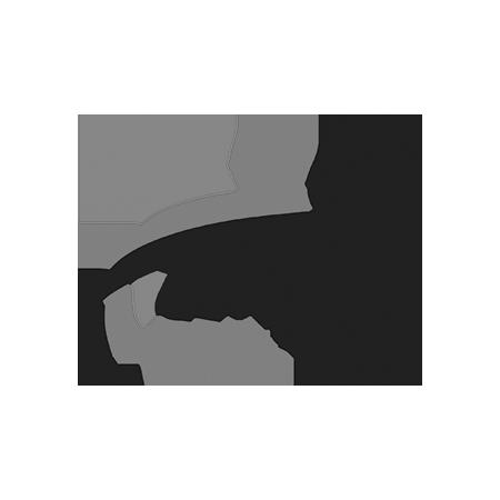 Conexión RSE